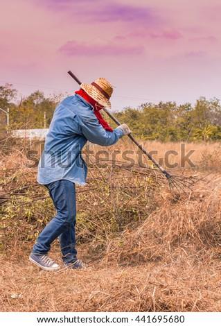 a man rake shoveling dry grass in evening - stock photo
