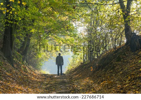 A man walking along a forest path in autumn - stock photo