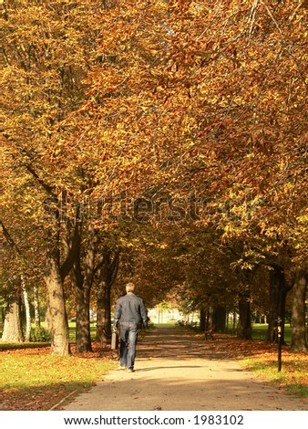 A man walking through the park n autumn