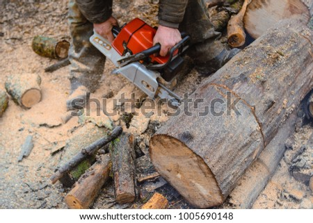 A man with a chainsaw sawing a large log for firewood. Focus on the sawing and sawdust. Smeared in oil men's hands holding the saw. The process of work.