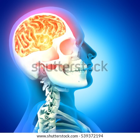 a man with a headache under x-ray, 3d rendering