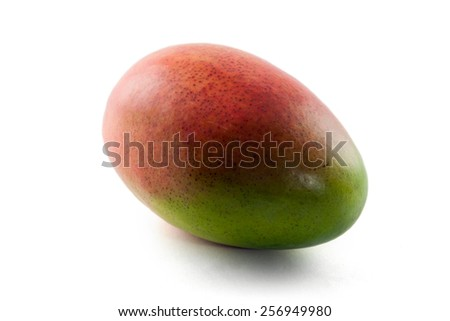 a Mango fruit in front of white background - stock photo