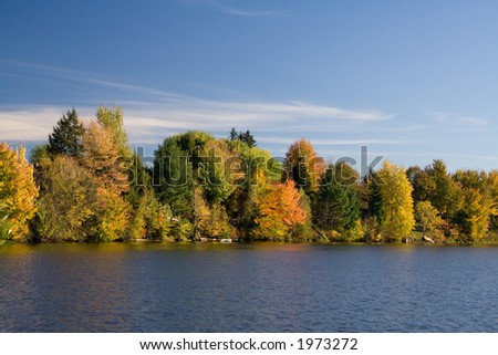 A Maples-rich lakefront in full Fall foliage. - stock photo