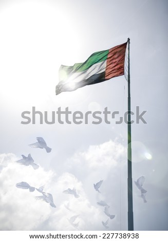 A massive flag of United Arab Emirates flying against a a sky with flying birds - stock photo