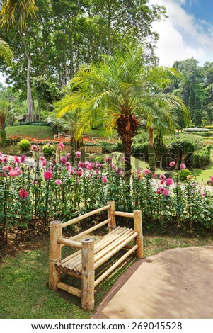 A masterpiece of landscape design - a huge and beautiful park in Thailand. Palm trees, flower beds and a comfortable bench - stock photo