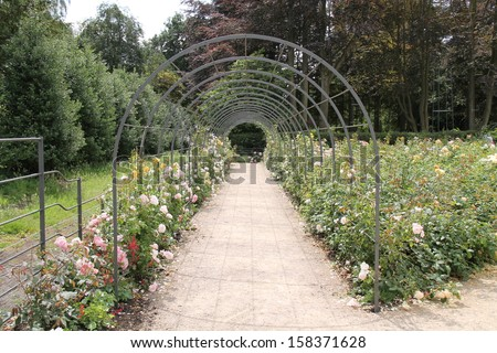 A Metal Archway Tunnel Through a Rose Garden. - stock photo