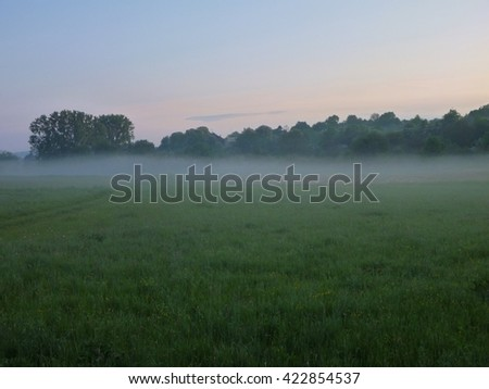 a misty morning in a grass walley