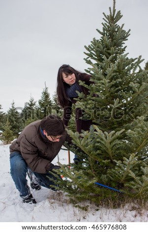 Cutting Down Christmas Tree Stock Images, Royalty-Free Images ...