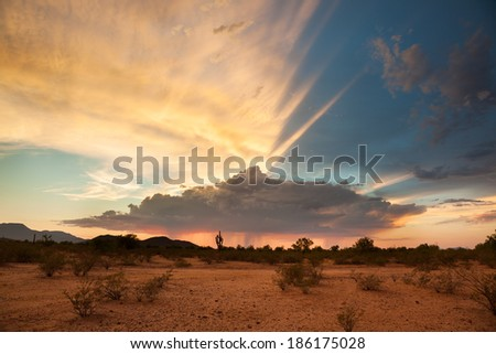 A Monsoon Storm Passes Across the Desert at Sunset.  - stock photo