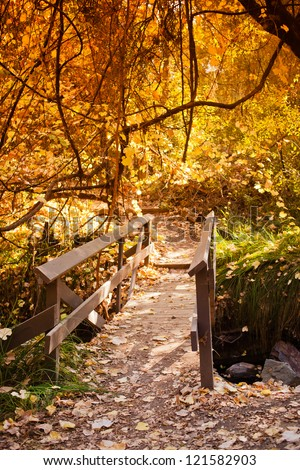 A morning shot of a wood bridge with the sun lighting up the yellow leaves.