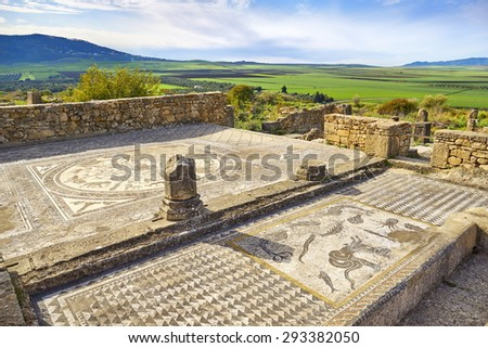 A mosaic in the Roman ruins of Volubilis, Meknes region, UNESCO, Morocco                                - stock photo