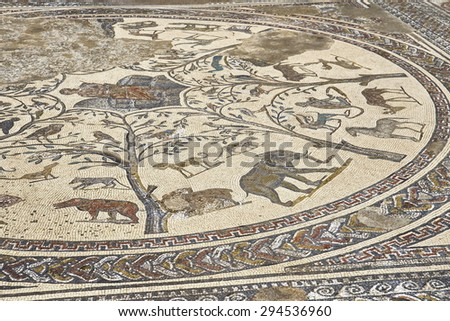 A mosaic in the Roman ruins of Volubilis, the House of Orpheus, Meknes region, UNESCO, Morocco                                       - stock photo