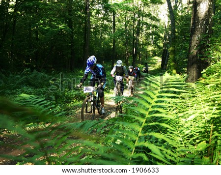 a mountain biker in a wood thicket