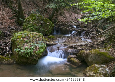 A mountain river in forest. - stock photo