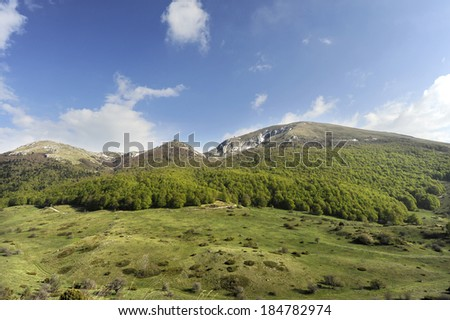 A mountain with coniferous trees in foreground, in Ohrid, Macedonia, on May 18th, 2011. - stock photo