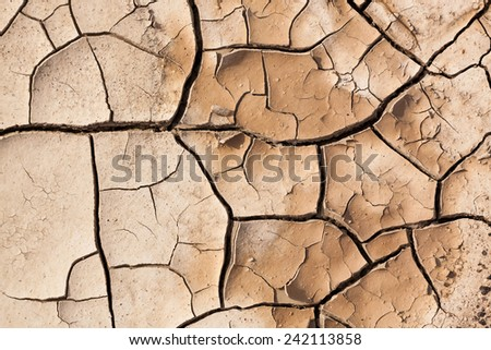 A muddy area that dried out to create a background of brown cracked earth pealing in to layers. - stock photo