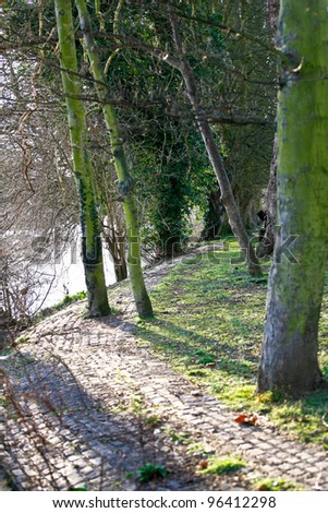 a muddy path by the river surrounded by trees with sun shining through the trees - stock photo