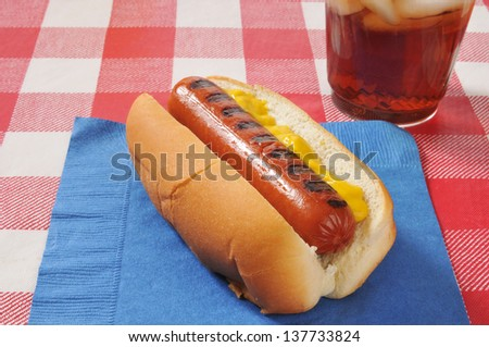 A mustard hot dog on a picnic table with a cola - stock photo