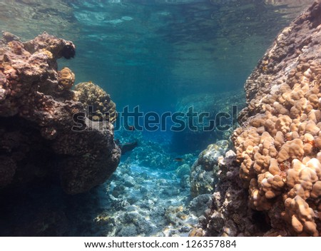 A narrow entry to a coral lagoon on a tropical reef - stock photo