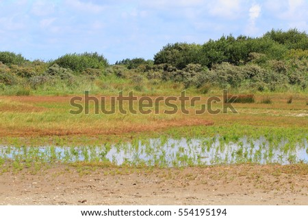 A natural landscape on the North Sea coast in the Netherlands