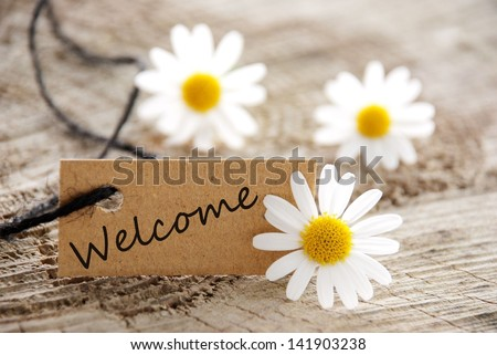 a natural looking banner with welcome and white blossoms as background - stock photo