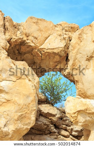 A natural window in a rock through with plant on the sky background