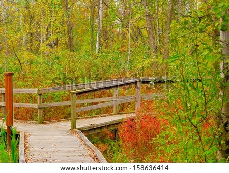 A nature trail wooden walkway leading into the woods.
