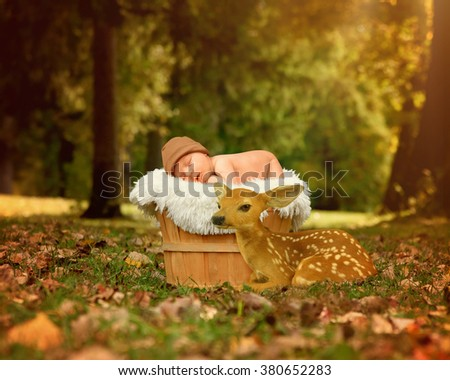 A newborn baby is sleeping in a basket in the park with a small deer fawn next to it for a friendship or love concept.