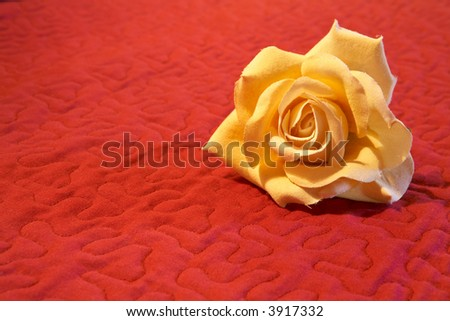 A nice artificial flower on red background. Shallow DOF - stock photo