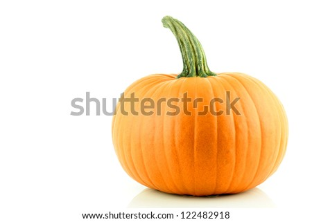 A nice orange Pumpkin on a white background. - stock photo