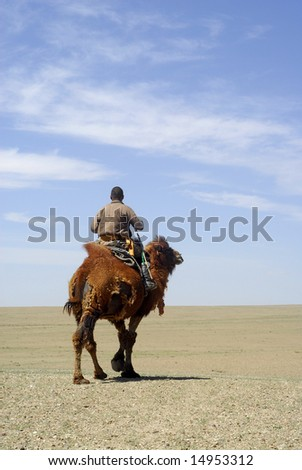 A nomadic herder riding his camel