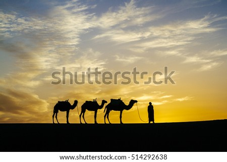 A nomadic sheppard stands silhouetted against a dramatic and vibrant sunset in the Erg Chigaga region of the Sahara desert, M'Hamid, Southern Morocco