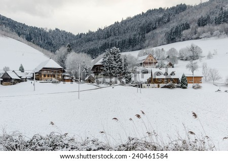 A number of houses in the Black Forest - stock photo