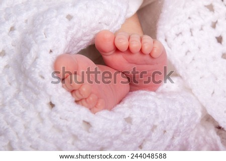 a pair of baby newborn feet in a soft white blanket - stock photo