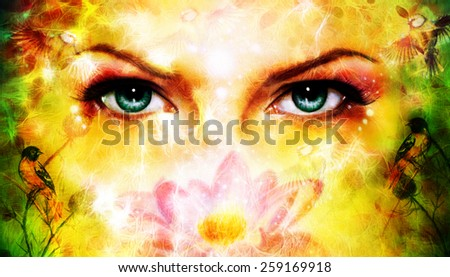 A pair of beautiful blue women eyes beaming up enchanting from behind a blooming rose lotus flower, with bird on yellow and green abstract background. - stock photo
