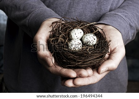 A pair of hands holding a nest with three eggs. - stock photo