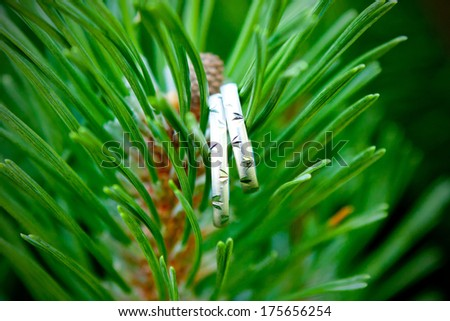 A pair of silver wedding rings hanging on tree branch, macro detail - stock photo