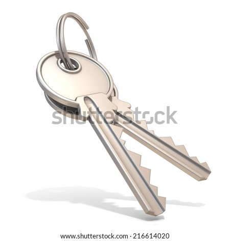 A pair of steel house keys isolated on white background - stock photo