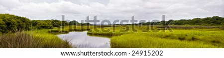 a panorama of a marsh in Wilmington, NC. - stock photo