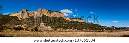 a panoramic shot of a savannah landscape with grass, trees and a mountain - stock photo