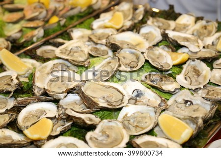 A party tray of fresh oysters after shucking - stock photo