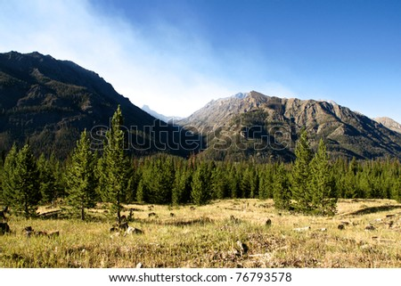 A pass through the mountains opens through the trees in northern Wyoming. - stock photo