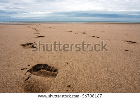 A path of footprints in the sand on a beach in summertime