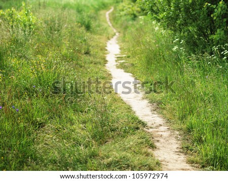 A pathway in the field - stock photo