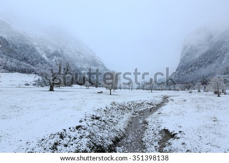 A pathway passing by the mountainside with maple trees covered by first snow on a foggy gloomy day ~ Somber autumn scenery of Karwendel Mountains in Austria ~ European alps ~ - stock photo