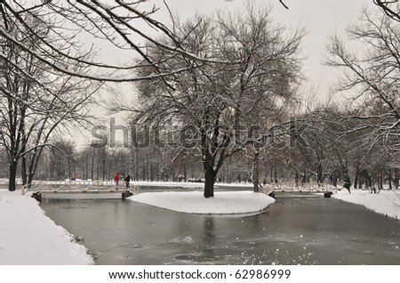 A peaceful image of an winter day in city park