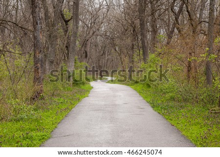 A peaceful path through the Missouri woodlands.