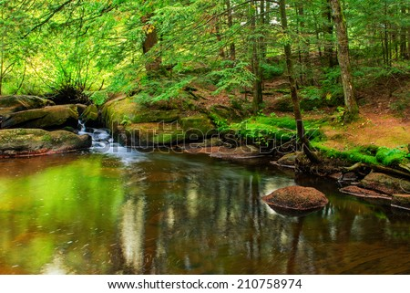A peaceful scene of a pond with a small waterfall in a lush green forest.  Potts Creek near High Falls, Bracebridge, Ontario, Canada.  - stock photo