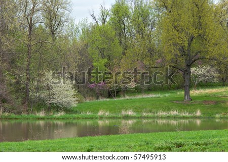 A peaceful spring landscape.