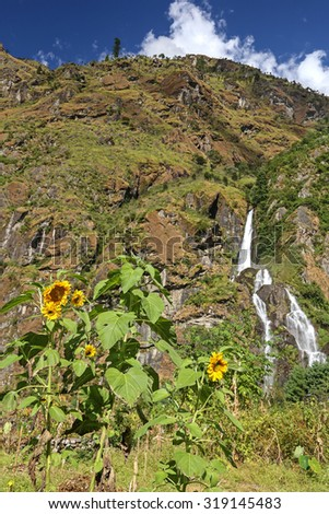 A peaceful waterfall in the mountains of Nepal. Sunflowers on the foreground
